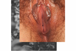 PEGATINA 3